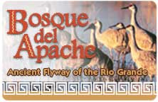 "Icon for ""Bosque del Apache"" produced by NMSU Media Productions"