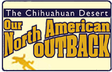 The Chihuahuan Desert: Our North American Outback