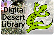 Image for the title slide of Digital Desert Library