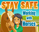Stay Safe Working With Horses